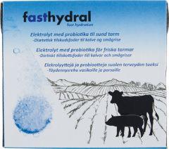 Fasthydral Elektrolyytti, poretabletti 48 kpl